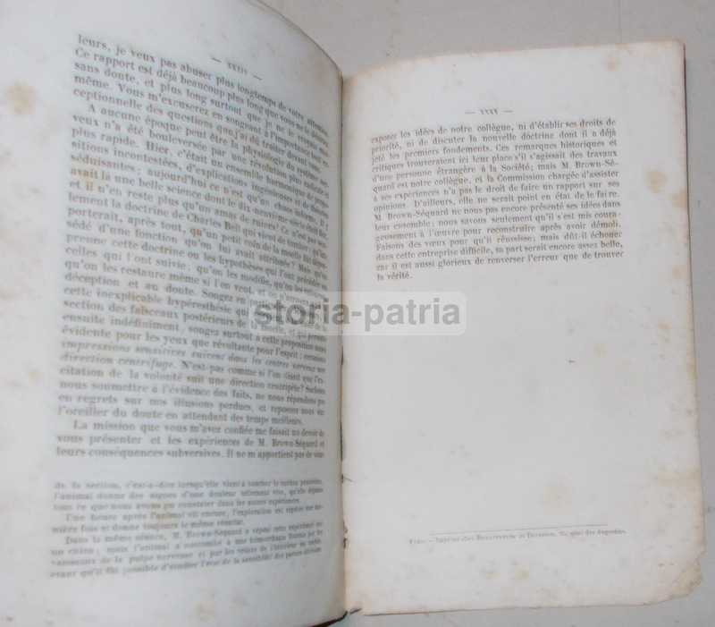 Medicina, Neurologia, Midollo Spinale, Esperienze Di Brown Sequard, Cavie, Broca, 800 immagine 2